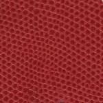 125 Red Lizard